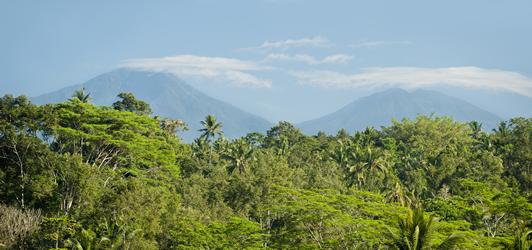 Keliki Villa Ubud Bali